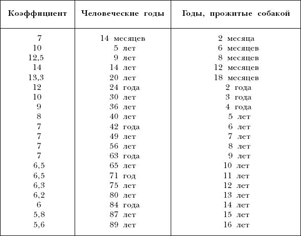 Сравнение возраста собаки и человека