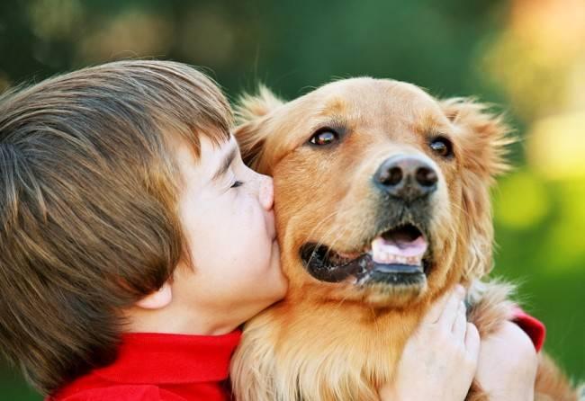 Противопоказания празицид суспензия плюс для собак