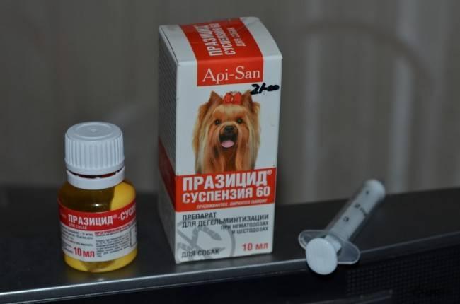 Празицид суспензия плюс для собак дозировка