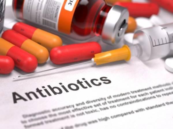 Должен пропиваться курс антибиотиков для собак