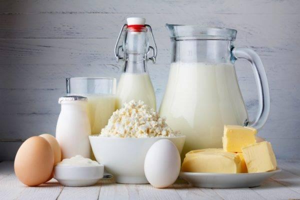 Молочные продукты для бладхаунда