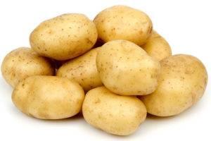 Картофель для собак