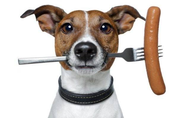 Колбаса для собак