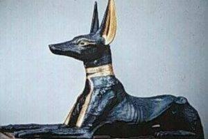 Собака и религия