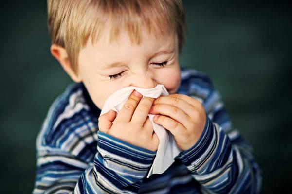 Аллергия на собак у детей