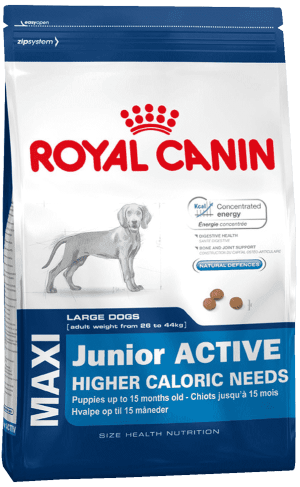 Royal Canin Junior Active