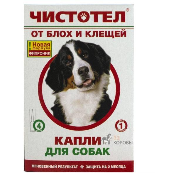 чистотел для собак читайте статью