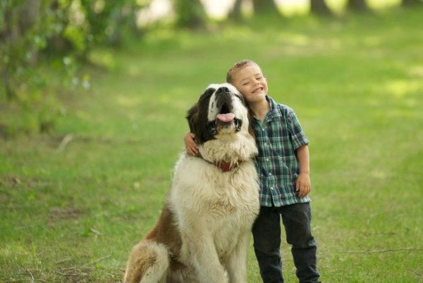 Мальчик с Москвоской Сторожевой собакой