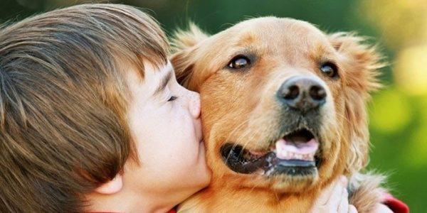Можно ли заразиться глистами от собаки читайте статью