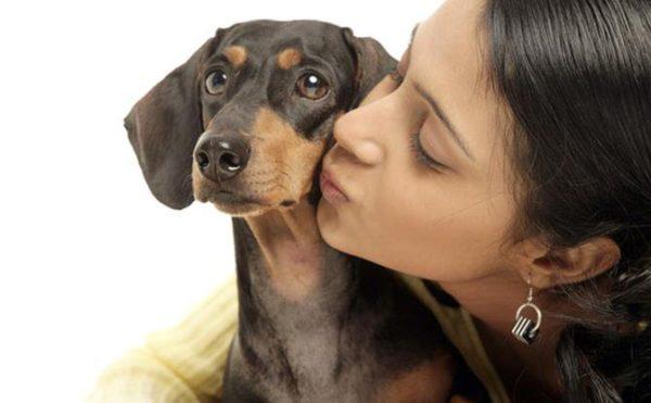 Почему нельзя целовать собак читайте статью