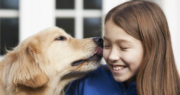 Почему нельзя целовать собак. Интересные факты