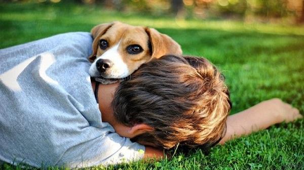Собачка на хозяине отдыхает
